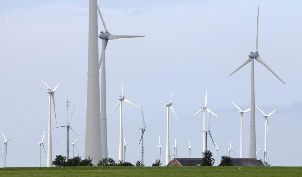 Bij de windmolens in de Eemshaven vallen veel vogelslachtoffers.  (beeld anp / Nils van Houts)