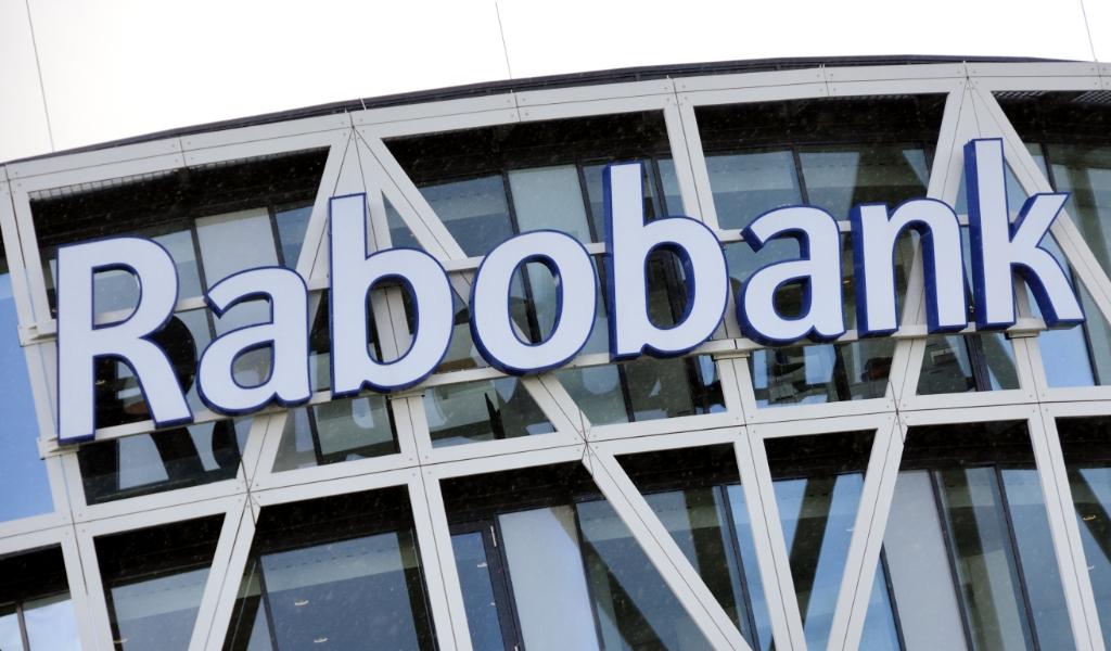 Vanaf 1 juli gaat de Rabobank op rekeningen met een tegoed van meer dan een miljoen euro 0,5 procent rente heffen.  (anp / Lex van Lieshout)