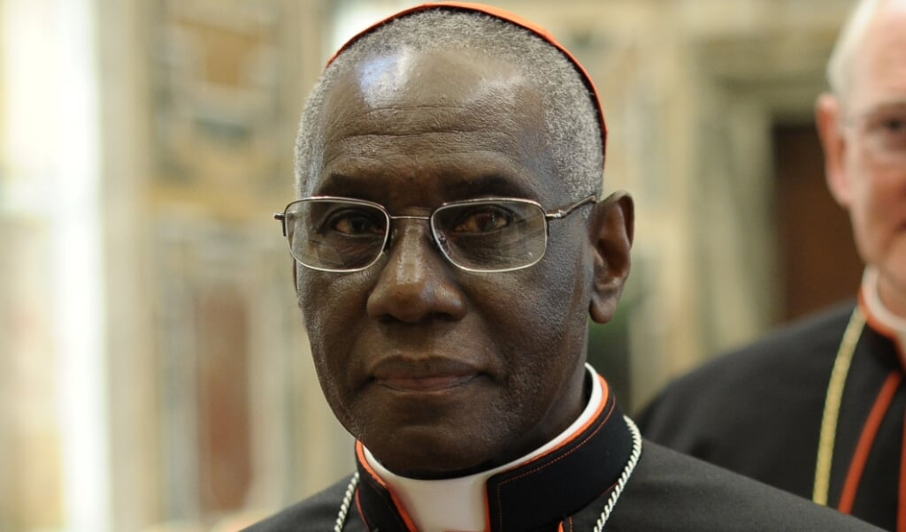 <p>Kardinaal Robert Sarah</p>  (beeld Osservatore Romano / afp)