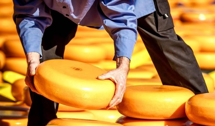 2019-03-29 10:15:02 ALKMAAR - Kazen tijdens de opening van het kaasseizoen van de grootste en oudste kaasmarkt van Nederland op het Waagplein. ANP REMKO DE WAAL  ( beeld anp)