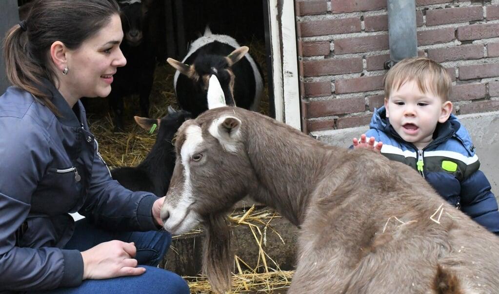 Lynne Kloosterman met zoontje Ryan bij de geiten bij De Goudse Hofsteden.  (beeld Theo Haerkens)