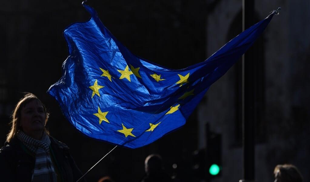 Een twee jaar durende conferentie over de toekomst van de EU gaat op 9 mei van start.  (beeld afp / Ben Stansall)