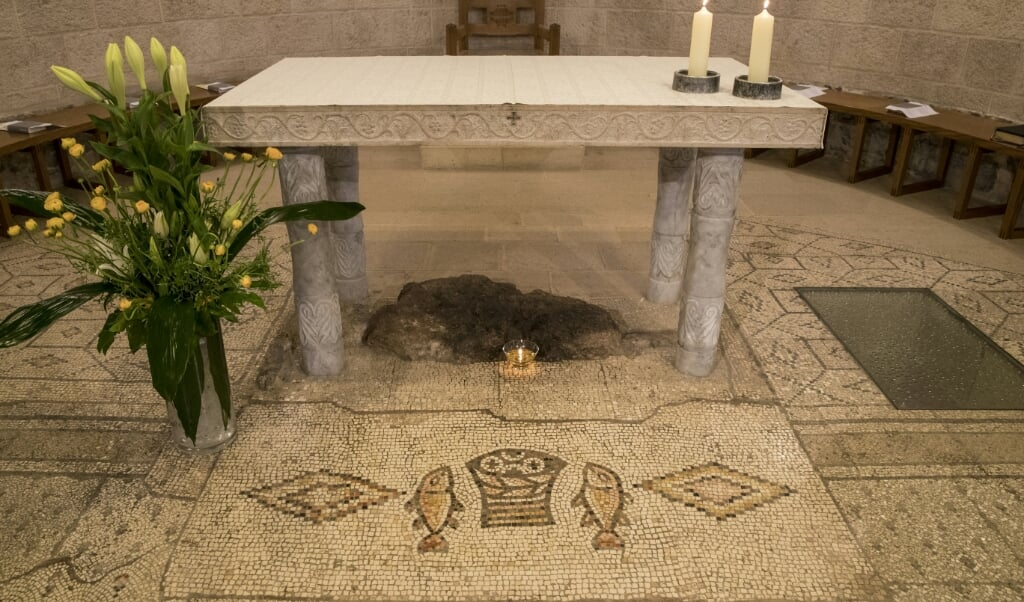 2017-02-12 05:40:01 A picture shows the altar of the Church of the Multiplication of the Loaves and Fish in Tabgha northern of Israel, on February 12, 2017, upon it's reopening following eight months of renovation. The church in northern Israel where Christians believe Jesus performed the miracle of the loaves and fishes reopened on February 12, 20 months after an arson attack by Jewish extremists. Two rooms of the church complex in Tabgha on the Sea of Galilee were vandalised and badly damaged in a June 2015 fire. JACK GUEZ / AFP  (beeld afp / Jack Guez)