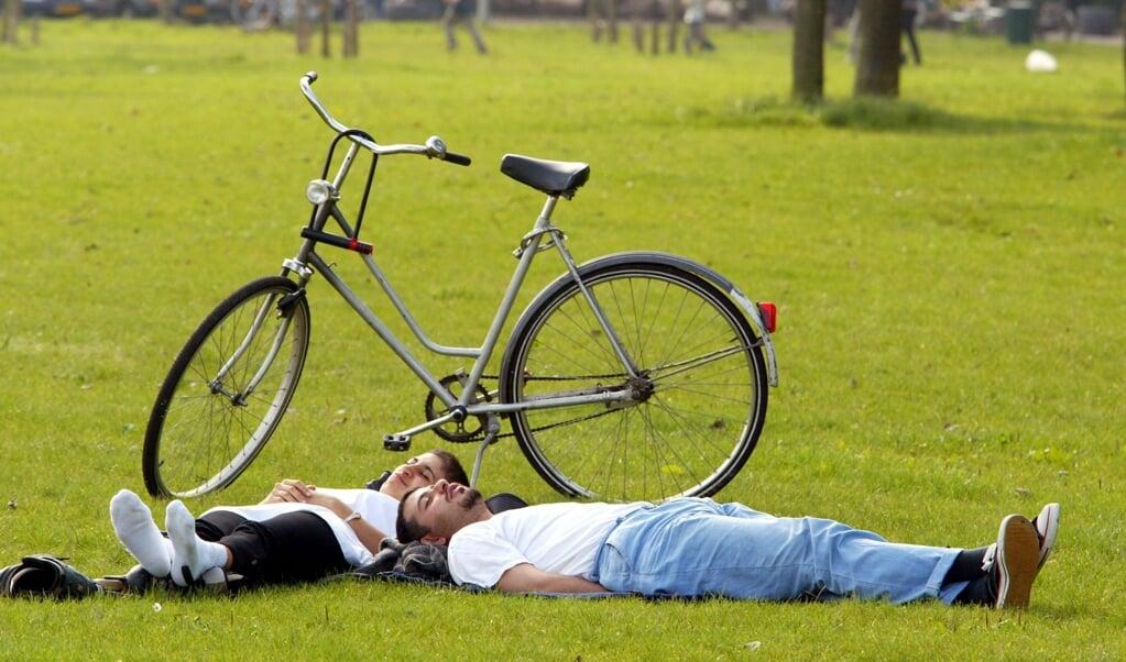 <p>Dagdromen in het gras, en ineens blaast je lief je in je neus</p>  (beeld anp / Ed Oudenaarden)