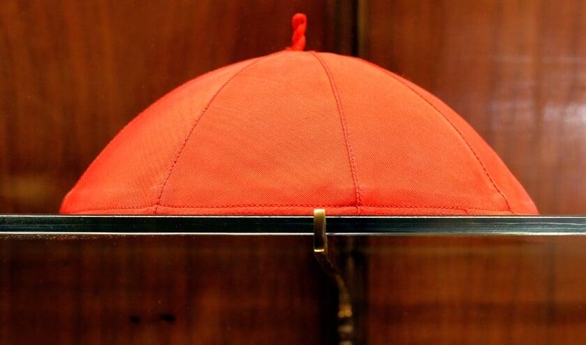 Paus creëert 13 nieuwe kardinalen, waarvan twee op afstand