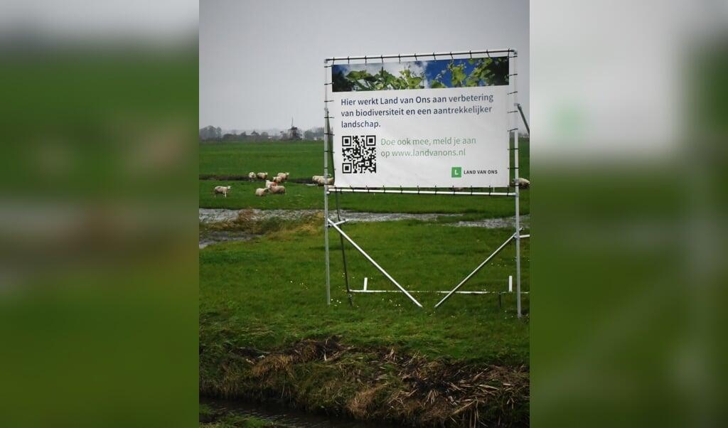 In Oude Ade, bij Leiden, heeft Land van Ons 21 hectare veenweide aangekocht. Een boer wil er blaarkoppen houden, koeien die naast melk ook vlees leveren.  (beeld Theo Haerkens)