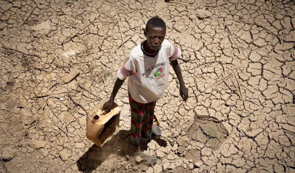 2017-03-14 10:29:19 BALILGUBADLE - In Somalie zijn vele miljoenen mensen ernstig ondervoed door de ernstige droogte. Putten zijn drooggevallen en in het uitgestrekte landschap liggen op veel plaatsen dode dieren. Meer dan de helft van het vee is omgekomen. Families verliezen hierdoor niet alleen hun inkomen, maar ook eten en melk, een belangrijke bron van voedingstoffen. ANP ARIE KIEVIT  (beeld anp)