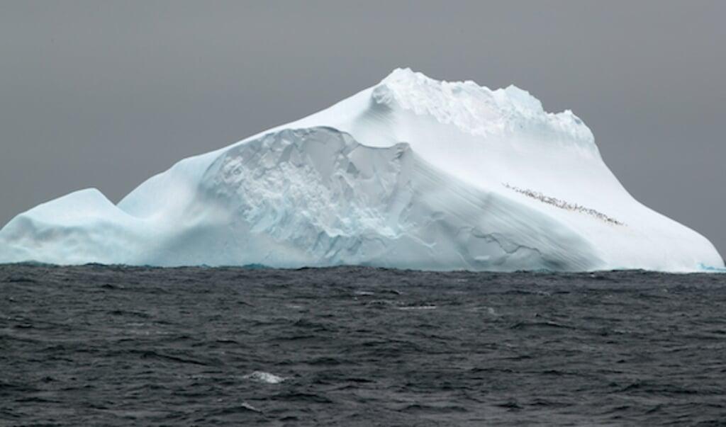 IJsberg in de Scotiazee, tussen Zuid-Amerika en Antarctica.  (beeld Thomas Ronge)