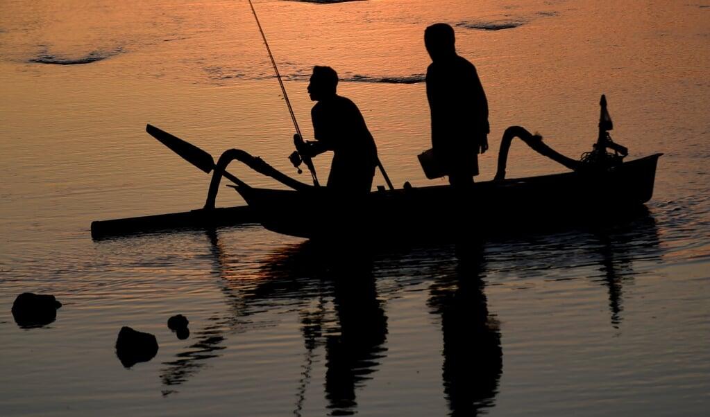 In tropische wateren zijn meer vissoorten.  (beeld afp / Sonny Tumbelaka)