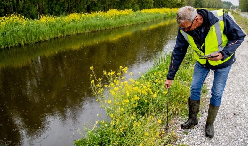 Het hoogheemraadschap van Delfland inspecteert veendijken. Die kunnen door de droogte sneller krimpen en barsten.  (beeld anp / Robin Utrecht)