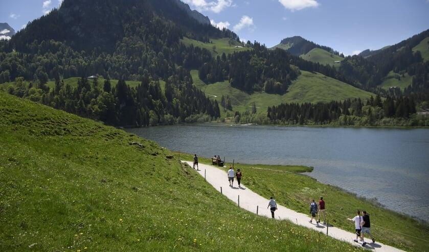 Zwitserland heeft meer toeristen dan gebruikelijk.  (beeld epa / Anthony Anex)