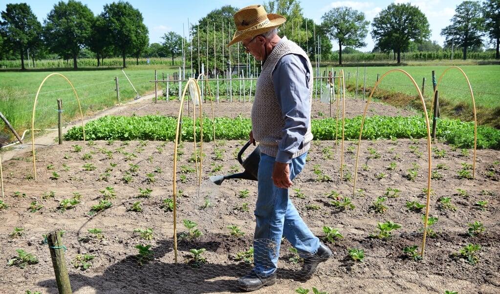 Moestuinen in het Brabantse Helvoirt. Zonder gieteren groeit er weinig.   (beeld Marcel van den Bergh)