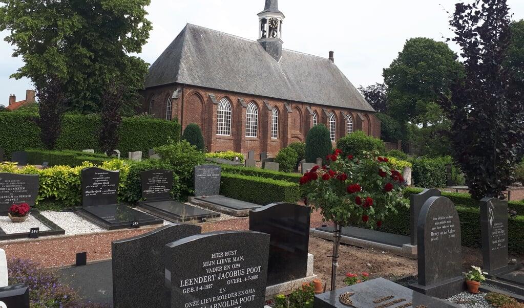 De begraafplaats in Hedel en de Nederlands-hervormde kerk met zijn witte houten torentje.  (beeld nd)