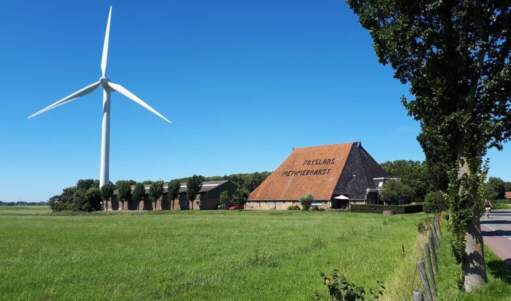 Deze boerderij staat vlak bij 'Fryslâns memmeboarst'.   (beeld )