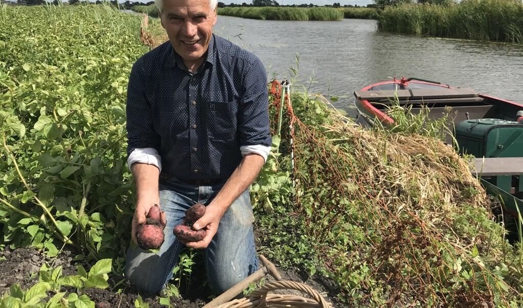 Piet Balder rooit aardappels.  (beeld nd)
