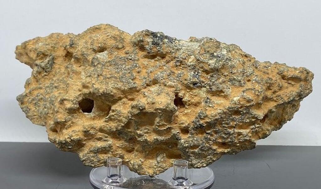 Meteoriet van de maan  (beeld Catawiki)