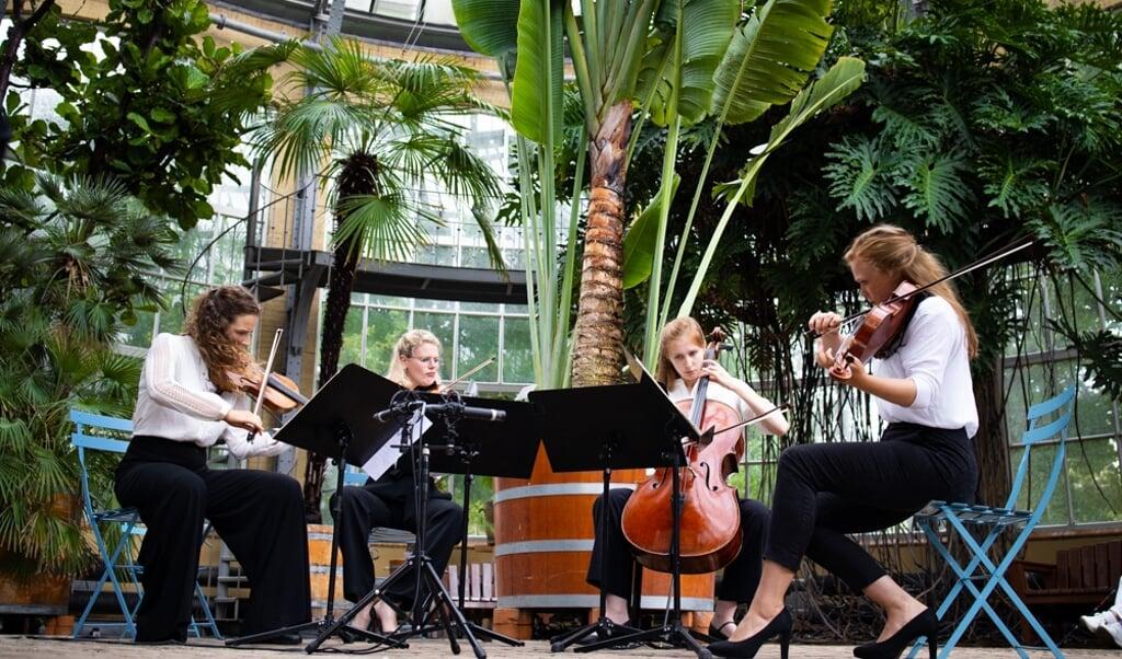 Het Helikon Kwartet tijdens een eerdere editie van het Grachtenfestival.  (beeld Wouter Zaalberg)