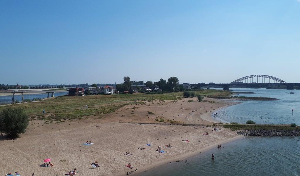 Verkoeling zoeken in de Waal bij Nijmegen.  (beeld nd)