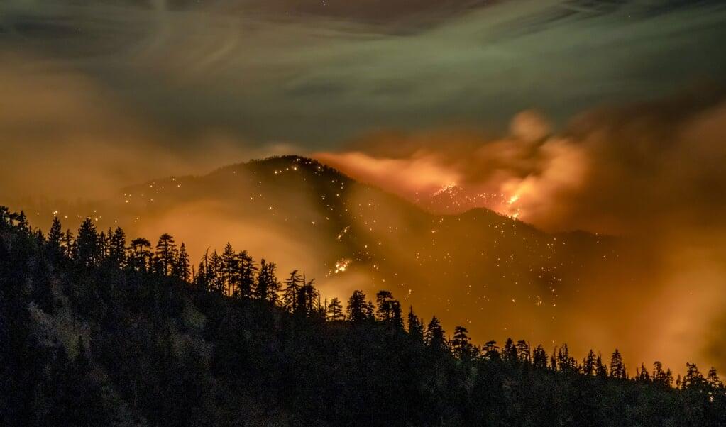 <p>In de heuvels rond Los Angeles woedden momenteel hevige bosbranden. Volgens Eric Holthaus komen door de klimaatverandering overal ter wereld vaker natuurrampen voor als bosbranden, orkanen en overstromingen.</p>  (beeld afp / Kyle Grillot )