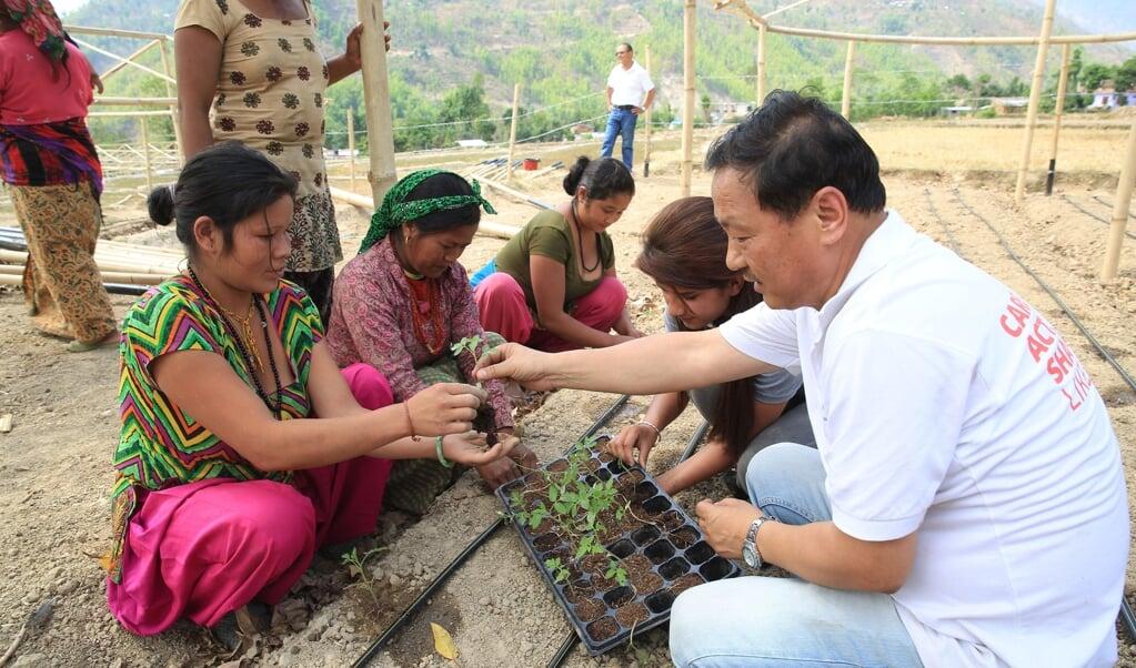 Een vrijwilliger van Cordaid in Nepal.  (beeld anp / Arie Kievit)