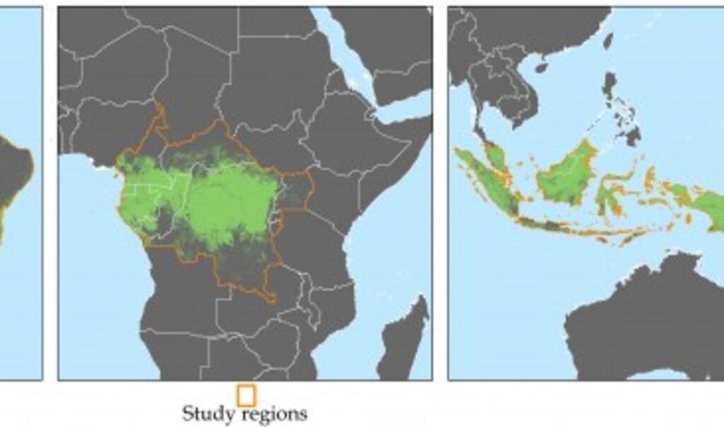 Observaties van ontbossing in 22 landen in Azië, Zuid-Amerika en Afrika.  (beeld universiteit van wisconsin-madison)