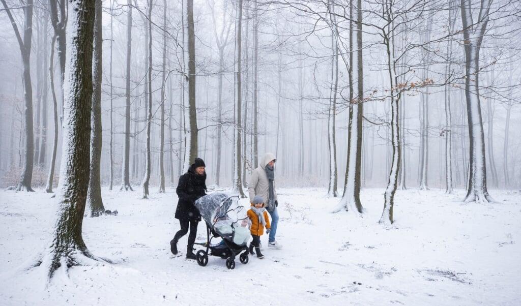 Sneeuw op het Drielandenpunt.  (beeld anp / Marcel van Hoorn)