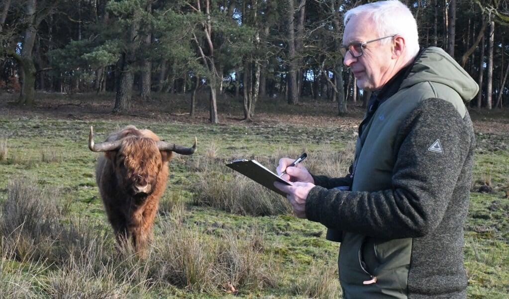Wildlife-dierenarts Henk Luten inspecteert de gezondheid van de Schotse hooglanders van Natuurmonumenten.  (beeld nd)