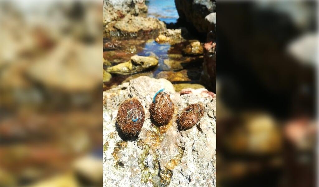 Neptunusballen op het strand van Majorca.  (beeld Marta Veny)