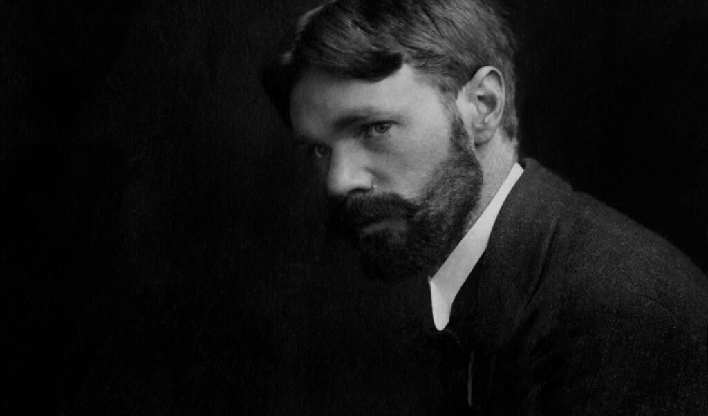 D.H. Lawrence  (beeld getty images)
