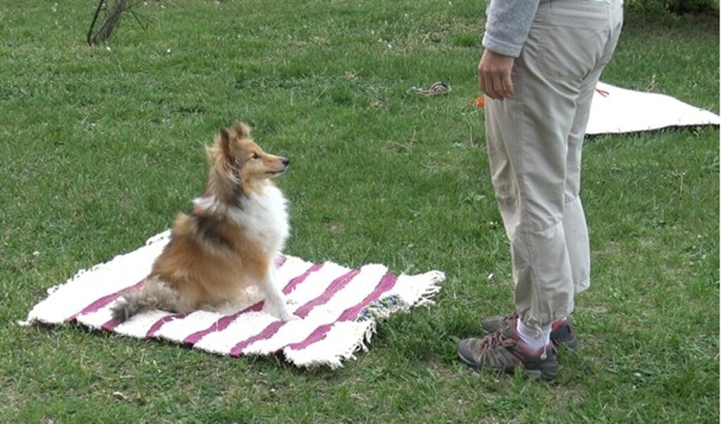 Een deelnemer aan het onderzoek zit op de mat, waar een object aan is vastgemaakt.  (beeld Rita Lenkei)