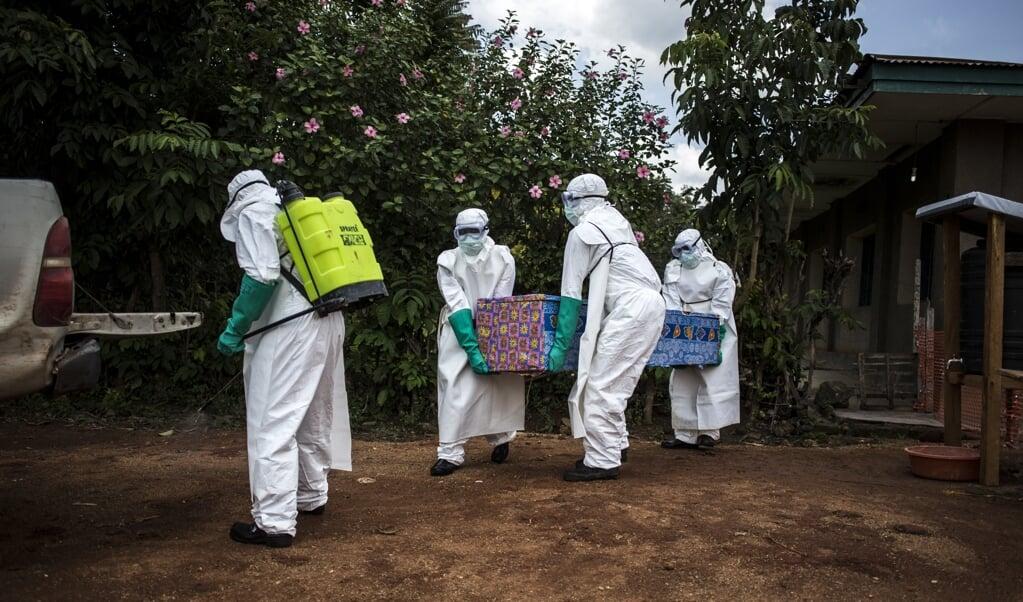 Volgens de Wereldgezondheidsorganisatie overlijdt gemiddeld de helft van de ebolapatiënten aan het virus.   (beeld afp / John Wessels)