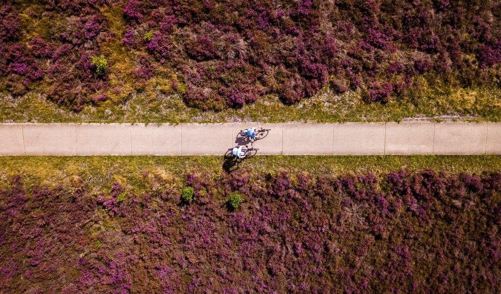 'De Veluwe is een aantrekkelijke plek vanwege rust en groen. Daarnaast zien we met name vijftigers en zestigers wegtrekken uit de Randstad naar het buitengebied.'  (beeld anp / Sem van der Wal)