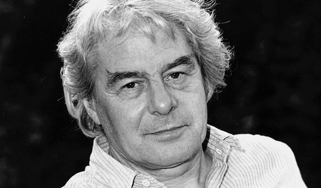 Lucebert in 1983.  (beeld anp)