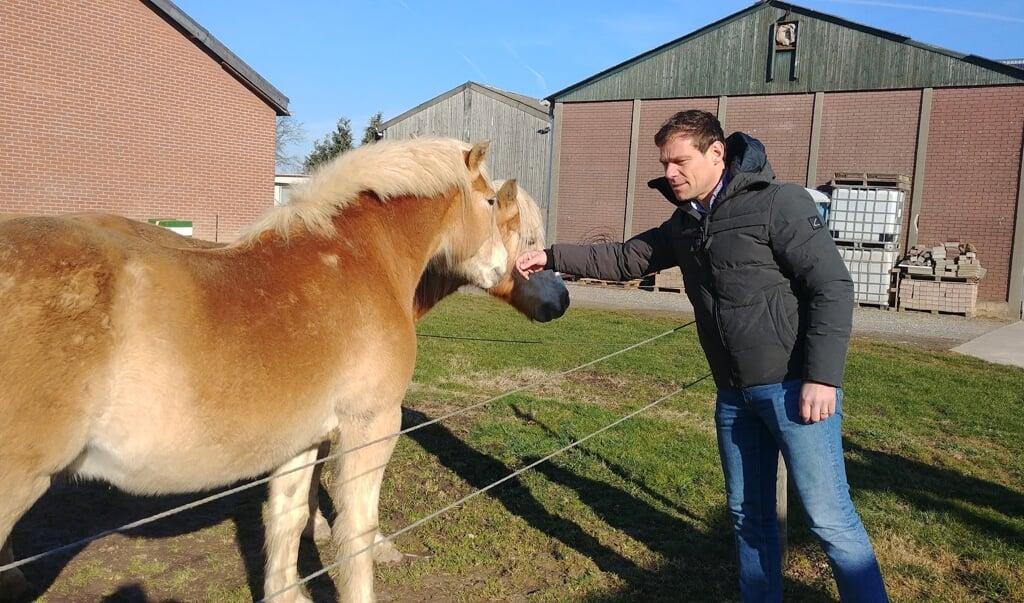 Martijn van Helvert aait een paard op bezoek bij een fruitteler nabij Valkenburg.  (beeld nd)