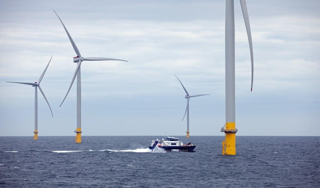 's Werelds grootste windmolenpark op zee, Hornsea, ligt voor de kust van het Britse Yorkshire. Vissen met sleepnetten is er verboden.  (beeld epa)