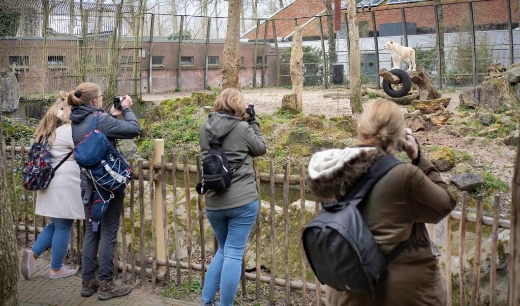 Ouwehands Dierenpark Rhenen opende woensdag de deuren voor tweeduizend bezoekers.  (beeld Niek Stam)