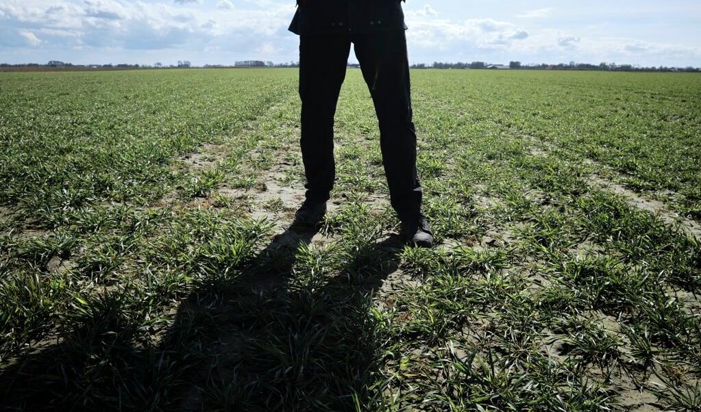 Bert Berghuis: 'Ik kom uit een boerengezin. Het is gewoon mijn way of living.'  (beeld Dick Vos)