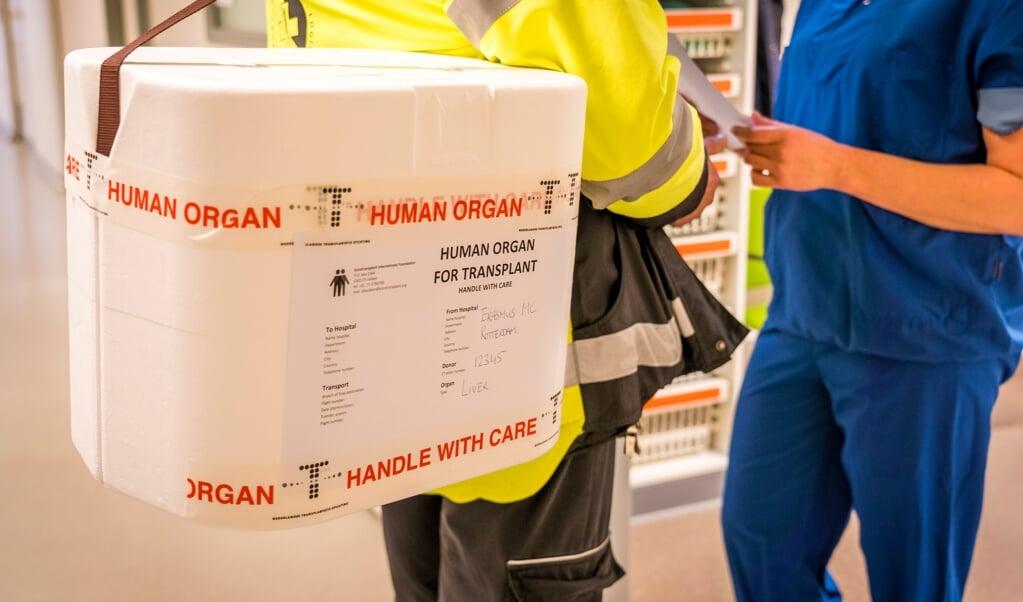 Een medewerker van het Erasmus MC vertrekt voor het transport van een orgaan.   (beeld anp)