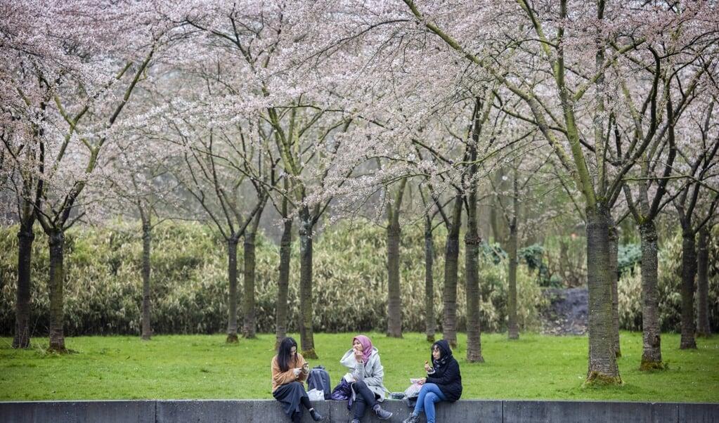 Jongeren in het Bloesempark in het Amsterdamse Bos. Het aantal werkende jongeren lag in februari nog altijd 5 procent lager dan bij de uitbraak van corona in maart vorig jaar.  (beeld anp / Ramon van Flymen)