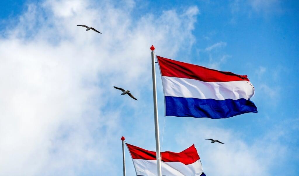 Nederland, Noordwijk aan Zee, 13-04-2021 Meeuwen vliegen onder een blauwe hemel over wapperende rood-wit-blauwe vlaggen op de boulevard van de badplaats Noordwijk aan Zee. De frisse zeelucht geeft je een gevoel van vrijheid. Foto ; ANP/Hollandse Hoogte/Pim Ras  (beeld anp / Pim Ras)