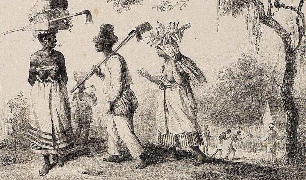 Slaven in Suriname op weg naar het veld om te gaan werken. Tekening van P.J. Benoît, 1839.  (beeld P.J. Benoît)
