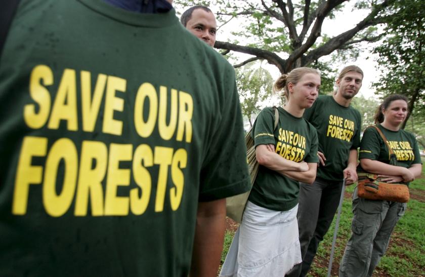 Greenpeace betrokken bij energierapport