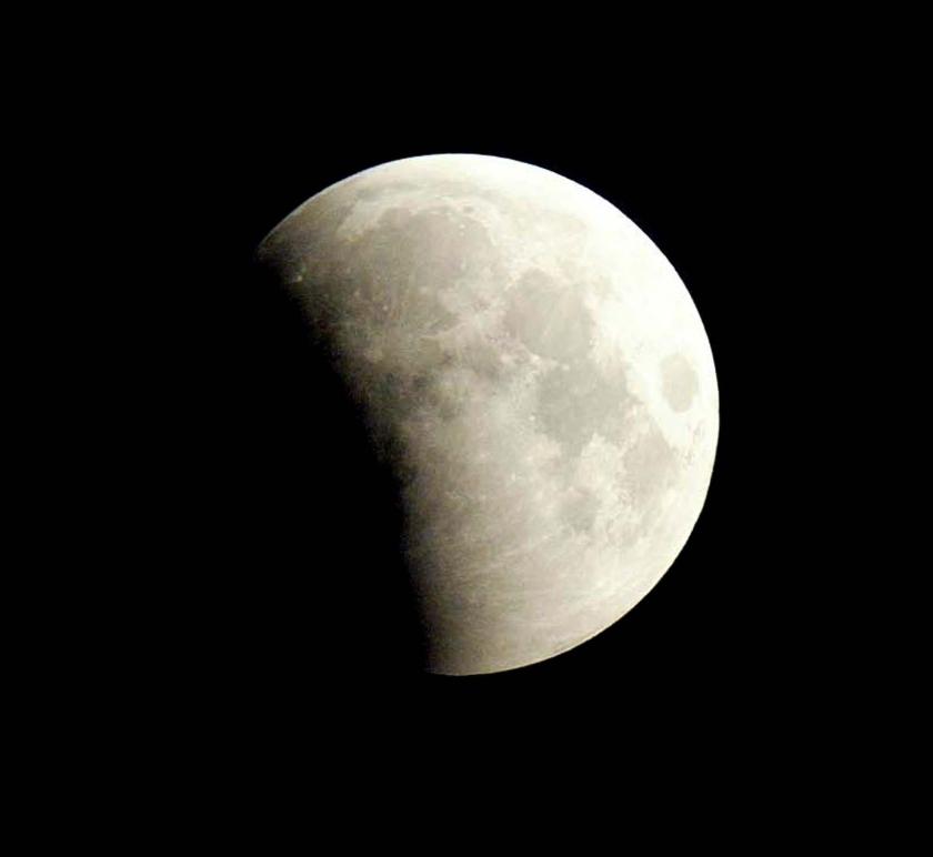 Hapje uit de maan op oudejaarsavond