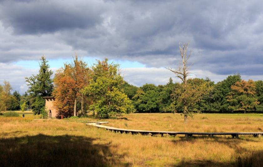 Het Pomphuisje op de Hoge Veluwe, een ontwerp van Henry van de Velde, dat een nieuwe functie als uitkijktoren heeft gekregen.