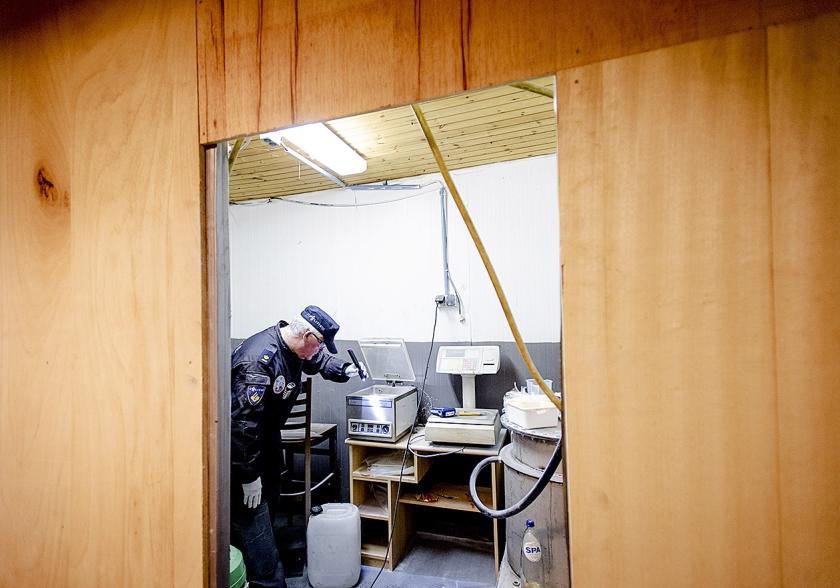 Een pand in het Brabantse Moergestel wordt doorzocht tijdens een operatie tegen drugscriminelen.  (anp / Robin van Lonkhuijsen)