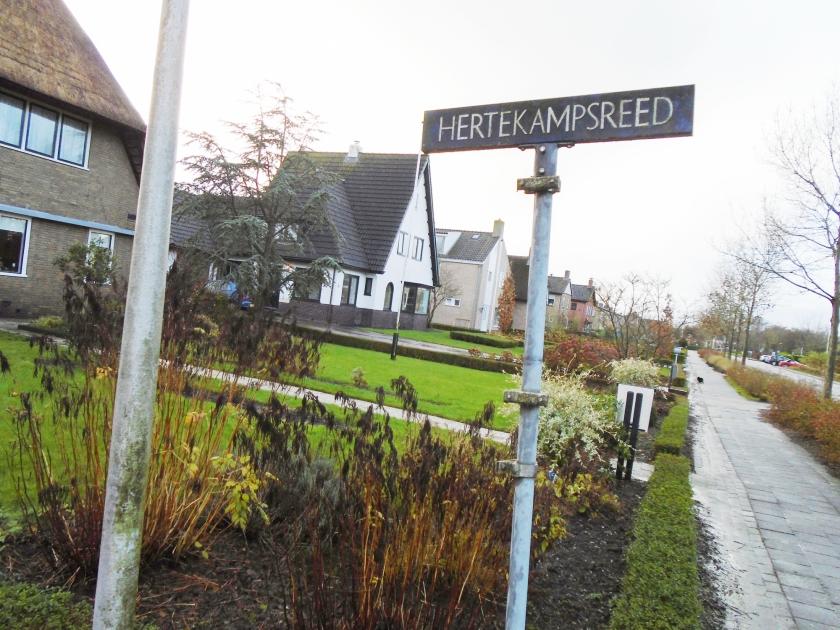Het voormalige kaatsterrein in Witmarsum – nu een woonwijk – waar ouderling Okma meedeed aan werelds vertier.  (nd)
