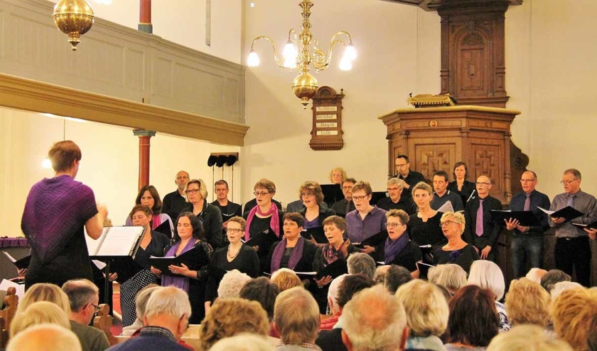 De Zwolse zanggroep Koorbizniz Oosterwind.  (koorbizniz oosterwind)