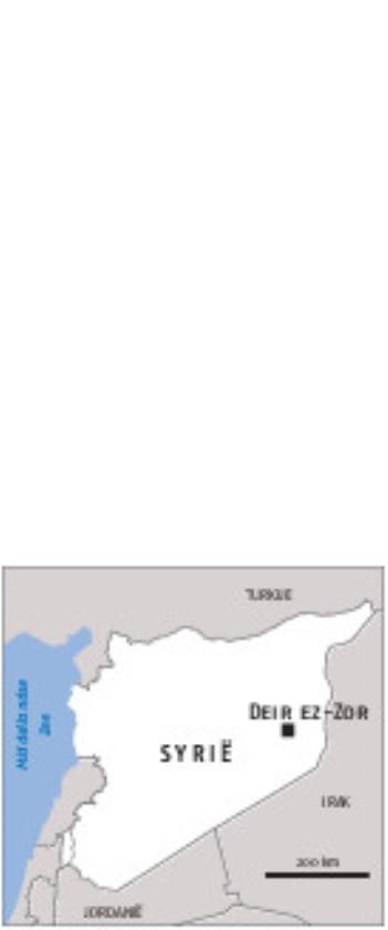 Begrip voor Turkse 'olijftak' raakt op   (ap / Susannah George)