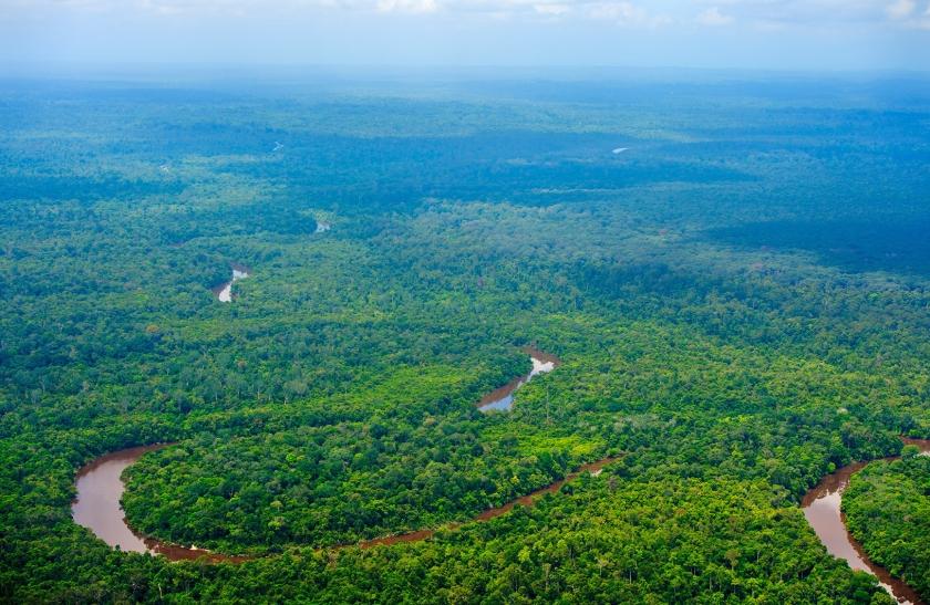 Uitgestrekte bossen op Borneo. Wetenschappers zijn het erover eens dat herbebossing en bosbescherming heel belangrijk kunnen zijn voor het klimaat.  (anp / Robin Utrecht)