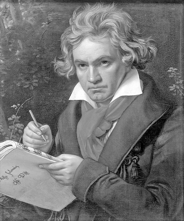 Ludwig van Beethoven   (wikipedia)